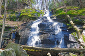 Cascade in the Smokies — Stock Photo