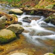 Stream in the wilderness - Stock Photo