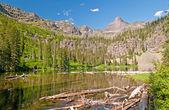 Lago alpino nel sole estivo — Foto Stock
