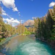 Stock Photo: Mountain river in Wilds