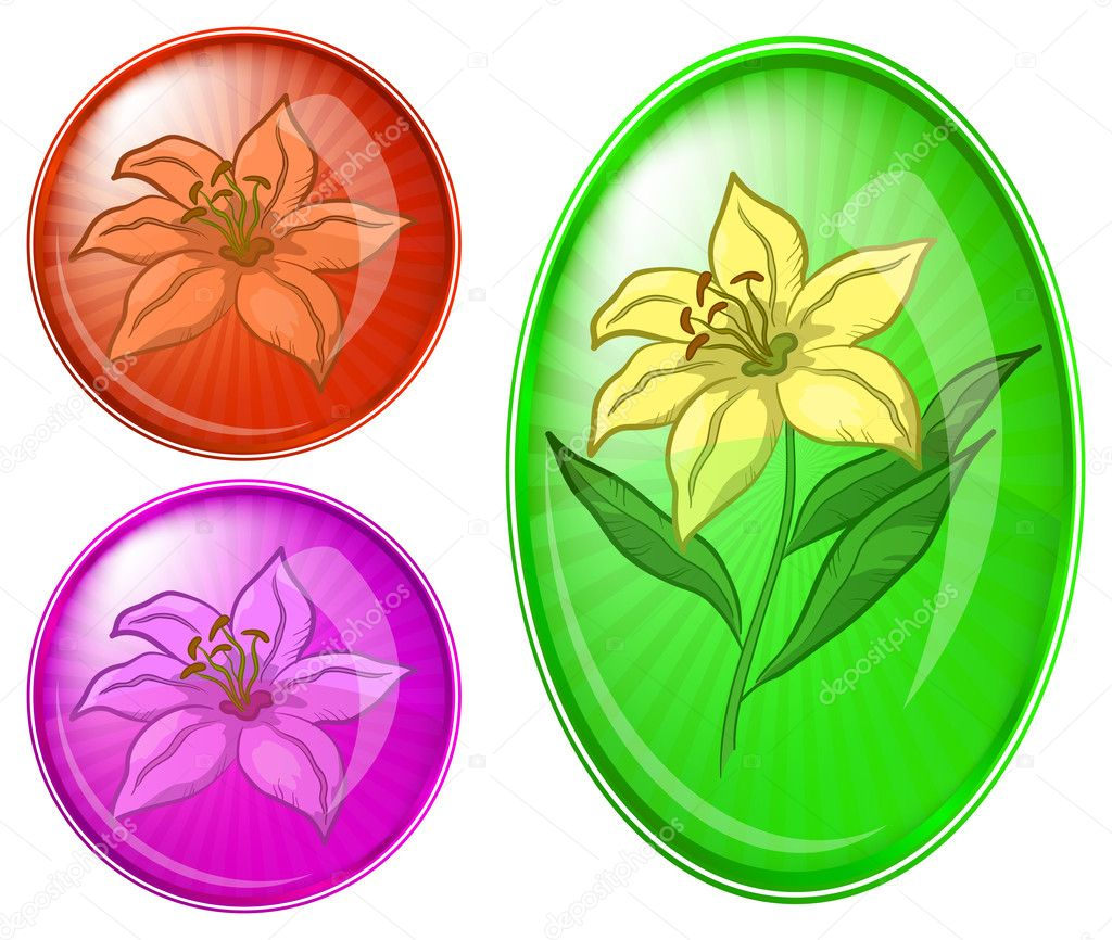 Icons, set buttons: flowers lily, vector eps10 — Stock Vector #5403852