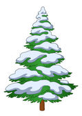 Fur-tree with snow — Stock Vector