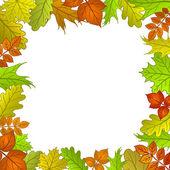 Framework from leaves — Stock Vector