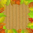 Leaves and wooden fence — Stock Photo