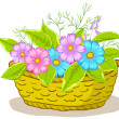 Stock Photo: Basket with flowers cosmos
