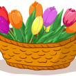 Stock Photo: Basket with flowers tulips