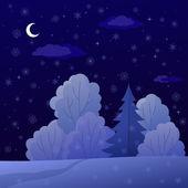Paisagem, floresta de inverno noite — Fotografia Stock