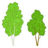 árvores de folha caducas — Vetorial Stock