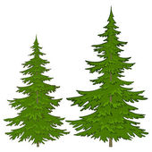 Fur-trees — Stock Vector