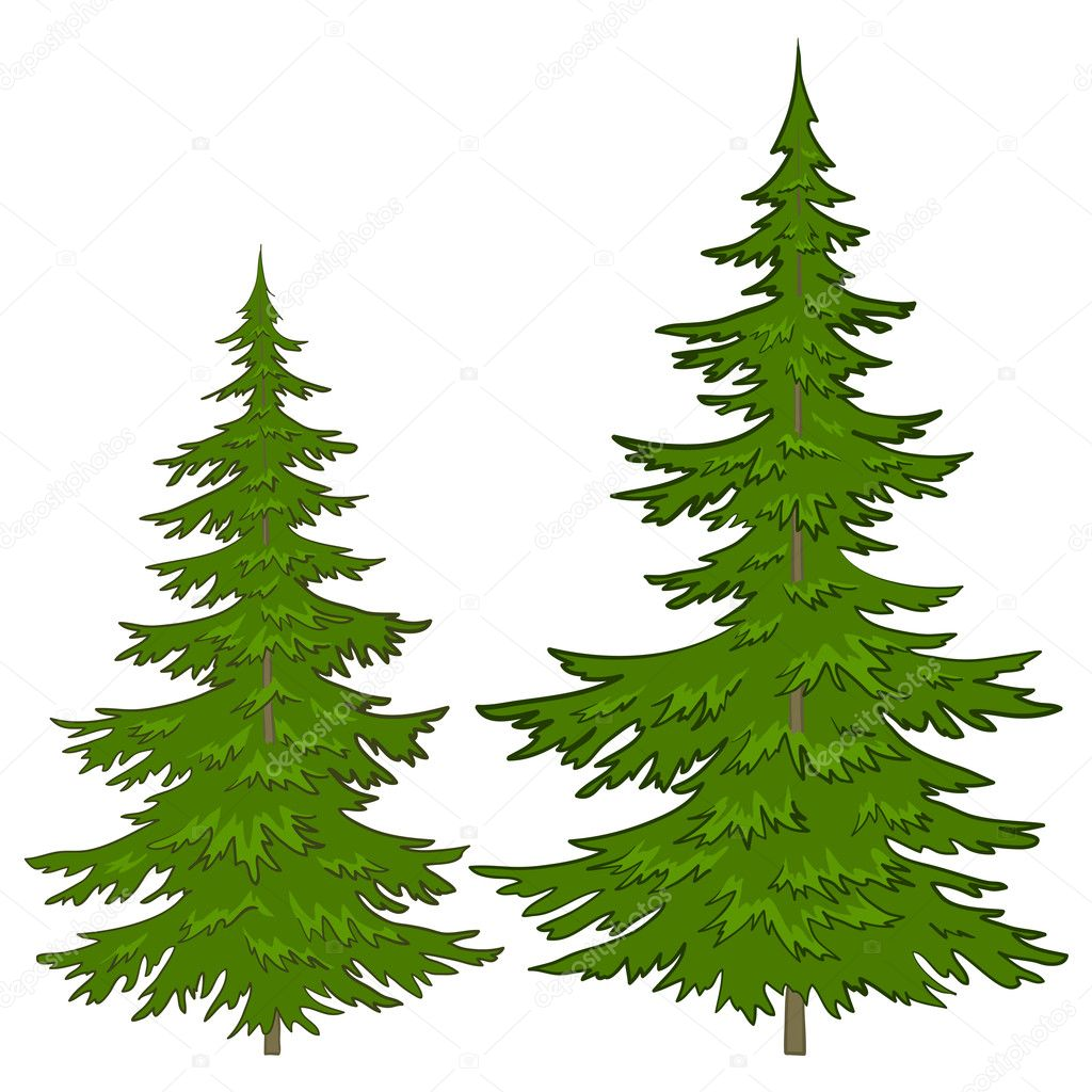 Trees, vector, christmas green fur-trees, isolated on a white background  Stock vektor #5846350