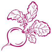 Radish with leaves, pictogram — Stock Photo