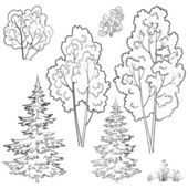 Rostlin, sady, obrys — Stock fotografie