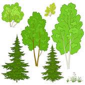 植物を設定します。 — ストックベクタ