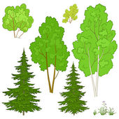 Plants, set — Stock Vector