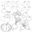Stock Vector: Vegetables and fruits, outline, set