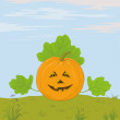 Stock Photo: Pumpkin Jack O Lantern