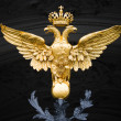 Double Eagle - Emblem of Russia — Stock Photo #5861415