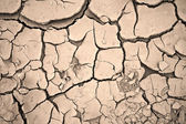 Dry cracked clay background texture — Stock Photo