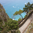 Capri view - Via Krupp - 图库照片