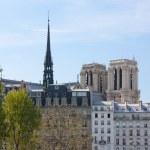 Notre-Dame de Paris and Ile Saint Louis — Stock Photo