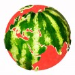 Water melon — Stock Photo