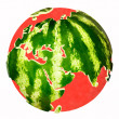 Stock Photo: Water melon