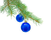 New Year's toys on blue spruce branch on a white background — Stock Photo