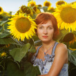 Woman on blooming sunflower field — Stock Photo