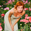 Woman in a garden of roses — Stock Photo #6443137