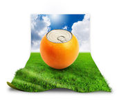Fresh orange can on grass over white — Stock Photo