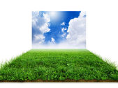 3D grass with clouds over white — Stock Photo