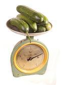 Pepinos en escalas — Foto de Stock