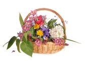 Bunch of flowers in a basket — Stock Photo