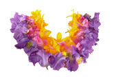 Wreath from petals — Stock Photo