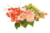 Sweet cherry, gooseberry and lavatera — Stock Photo