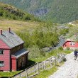 norwegian house of colors in the mountains — Stock Photo #6280513