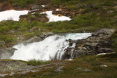 Wild streams and waterfalls of Norway in summer — Stock Photo