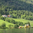 Wonderful fjord greens of norvege in spring — Stock Photo