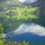 Wonderful fjord greens of norvege in spring — Stock Photo