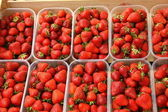 Trays of beautiful red strawberries and ripe de France — Stock Photo