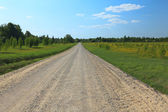 Rural road on sunny day. — Fotografia Stock
