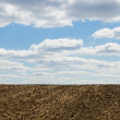 Arable soil - Stock Photo