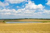 池と雲 — ストック写真