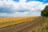 Wiejskiej drodze — Zdjęcie stockowe