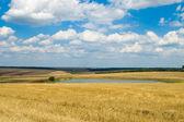 Kırsal görünümü — Stok fotoğraf