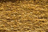 Textured straw — Stock Photo