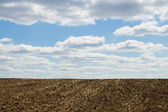 Arable soil — Stock Photo