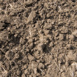 Black soil - Stock Photo