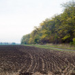Tilled soil — Stock Photo