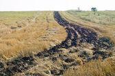 Barre de terre noire — Photo